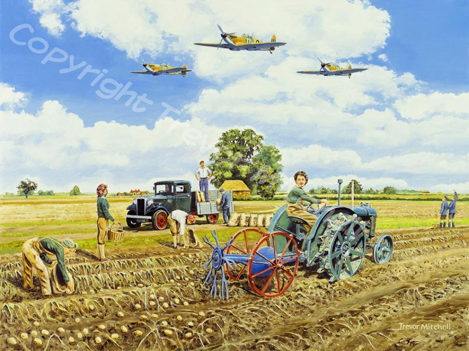 Aircraft   Trevor Mitchell - Artist